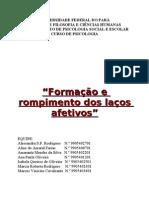 24810080 Formacao e Rompimento Dos Lacos Afetivos