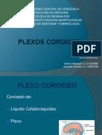 PLEXOS COROIDES