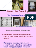 Molecular Breeding 03