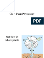 4. Plant Physiology - I.ppt