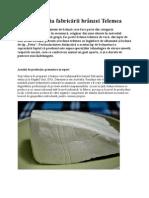 Tehnologia fabricării brânzei Telemea