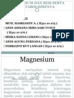 Magnesium Dan Besi Serta Metabolismenya.ppt