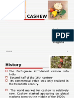 483654 Cashew Project Report