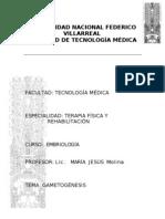 MONOGRAFIA DE GAMETOGENESIS