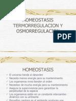 homeostasistermoregulacion