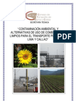 Contaminacion Vehicular_Biocombustibles - Compendio
