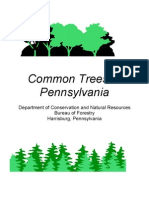 Common Trees of PA