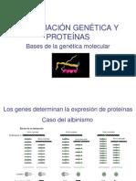 4º - Genética molecular IV 2012
