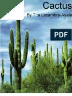 Cactus by Tita Lacambra-Ayala