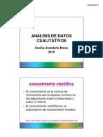 2010-1_analisis_datos_cualitativos