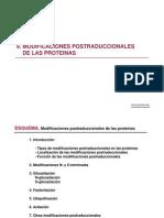 9. Modificaciones Postraduccionales de Las Proteinas
