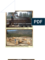 Madera Rolliza_proceso Constructivo