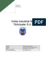Informe Shussler P F