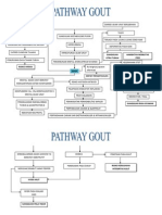 Pathway Gout
