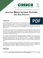 Cluster Practical Guide Rel1