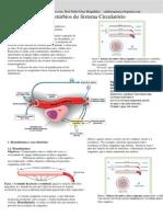 Apostila Doenças Cardiovasculares
