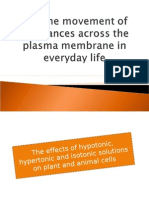 Movement of Substances Across the Plasma Membrane in Everyday Life