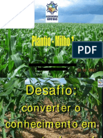 MILHO - Plantio_ Densidade_Espaçamento 1