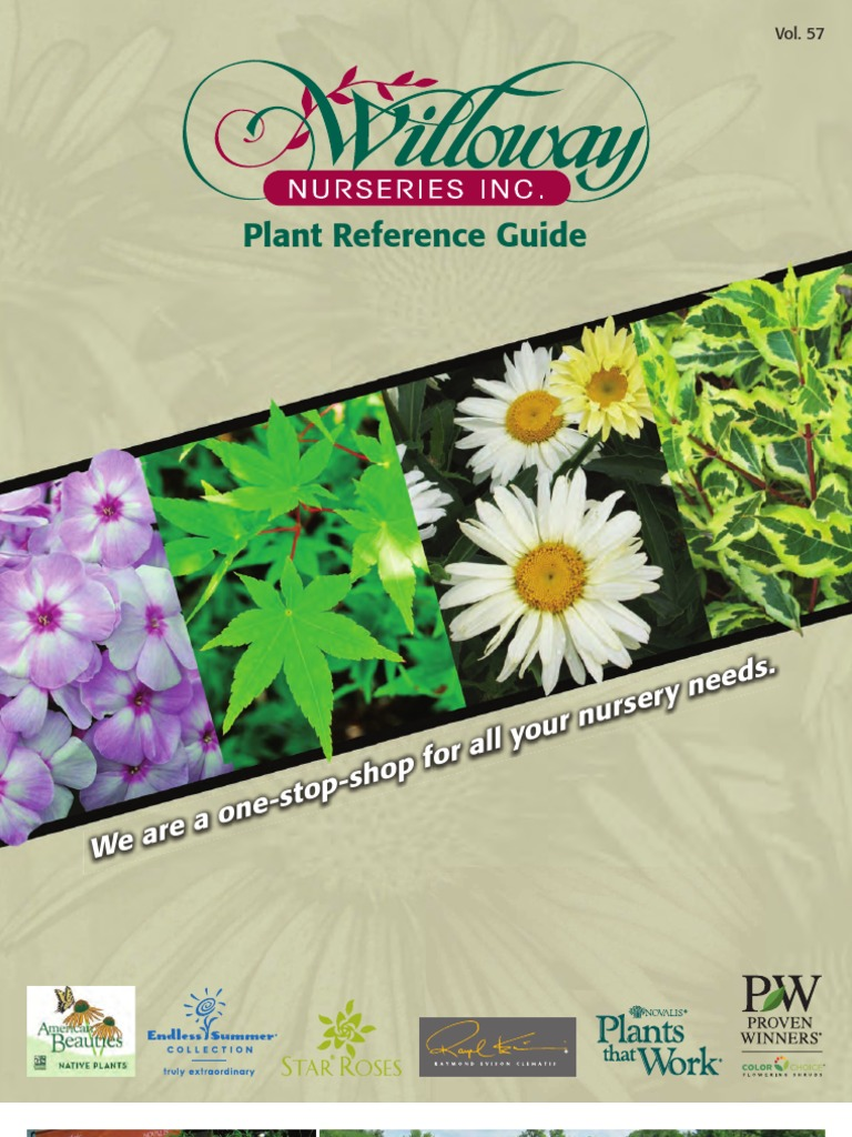 Willoway Nurseries Plant Reference Guide Maple Ethnobotany