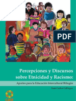 Folleto de Etnicidad y Racismo