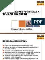 instalarea_profesionala CUPRU