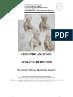 Descripcion Articular Apendicular Superior 2012