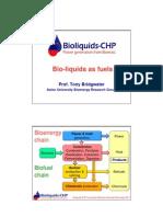 Aston University - Tony Bridgwater - Introduction to Liquid Biofuels for CHP Generation