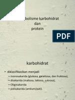 Biokimia Karbohidrat Dan Protein