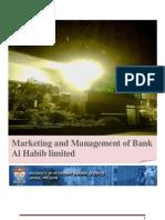 19252773 Bank Al Habib Marketing Management