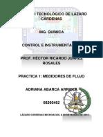 Report de Visita-control e Instr