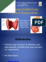 glandulas_raq