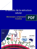 Clase I Micoscopía IB 2007