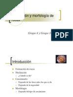 Nucleación y morfología de