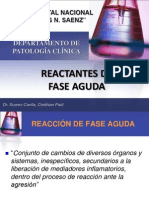 3reactantesfaseaguda-100316183254-phpapp02