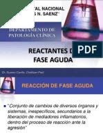 3reactantesfaseaguda-100316183254-phpapp02