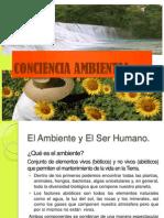 presentacion ambiental