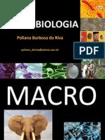 Microbiologia Introducao Aula 01