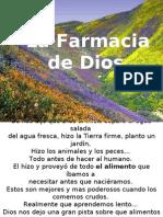Farmacia Natural 2