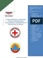 Manual Del Voluntario de La Defensa Civil