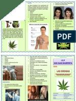 DROGA Marihuana