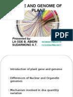 Gen & Genom Tumbuhan
