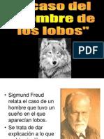 TP Hombre de Los Lobos
