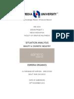 Situation Analysis Esmeria Organics