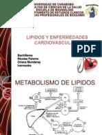 Metabolismo de Lipidos Y CARDIO