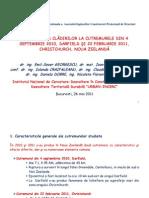 Prez. Cutremur N Zealand ESG Et Al AICPS 2011