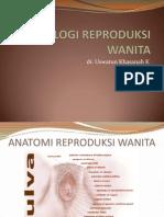 Anatomi Fisiologi Reproduksi Wanita