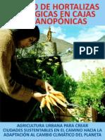 Cultivo de Hortalizas Ecologic As en Cajas Organoponicas