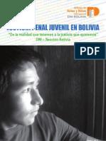 DNI Bolivia - Justicia Penal Juvenil en Bolivia