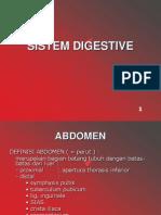 Organ Tubuh Pada Regio Abdomen