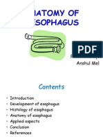 Anatomy of Oesophagus (2)
